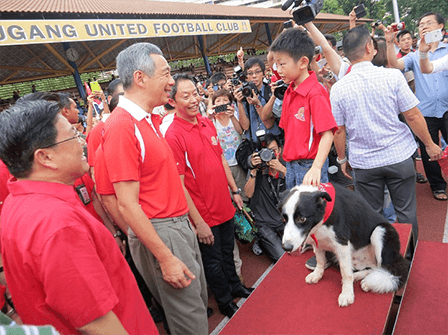 Singapore Dog Training Lee Hsien Loong